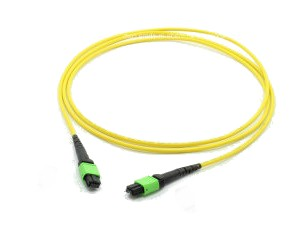 5m MTP/MPO Patch lead OS2 12 Fibre Female A type